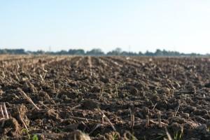 Analyser les potentiels risques liés au sol